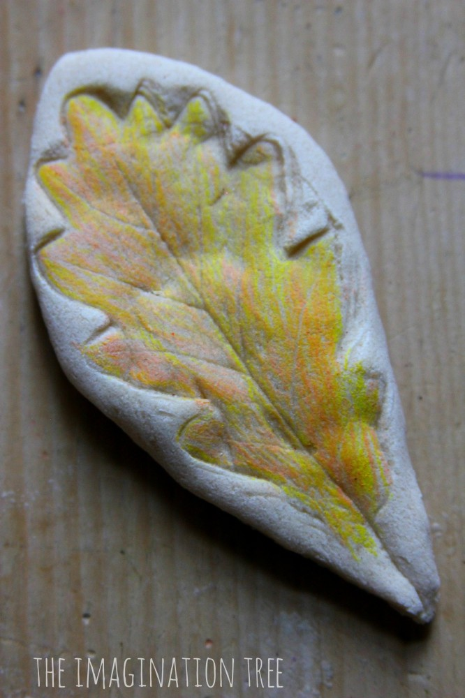 Clay leaf impression