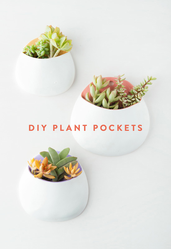 Diy clay plant wall pockets