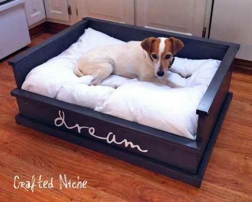 Dream dog bed diy