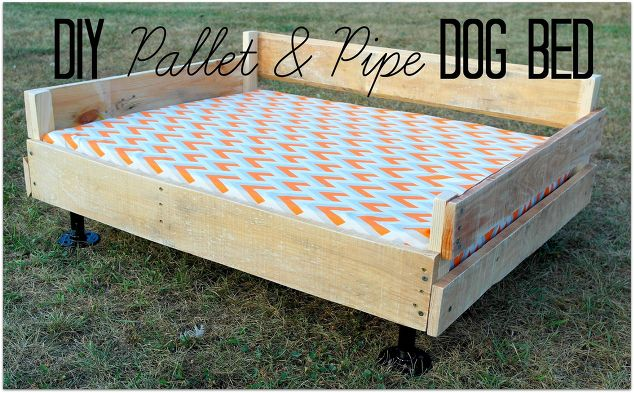 Pallet pipe dog bed platform diy pallet pets animals 1