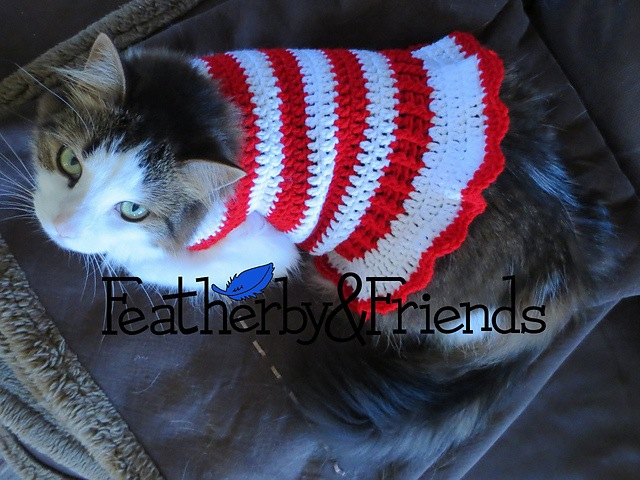 Candy cane pet sweater