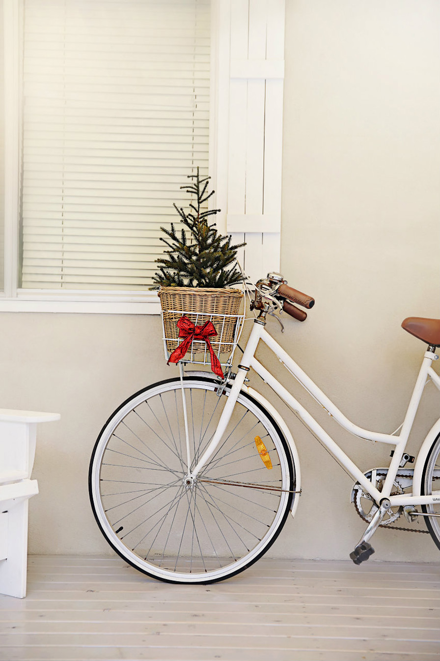 Diy christmas bike basket