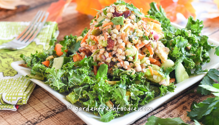 Harvest buckwheat salad apple cider dressing