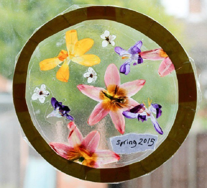 Pressed flower sun catchers