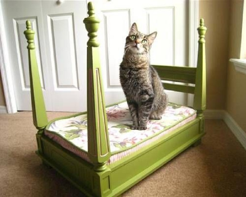 Four poster cat bed from an upside down table