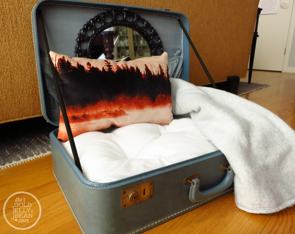 Old suitcase with a cushion