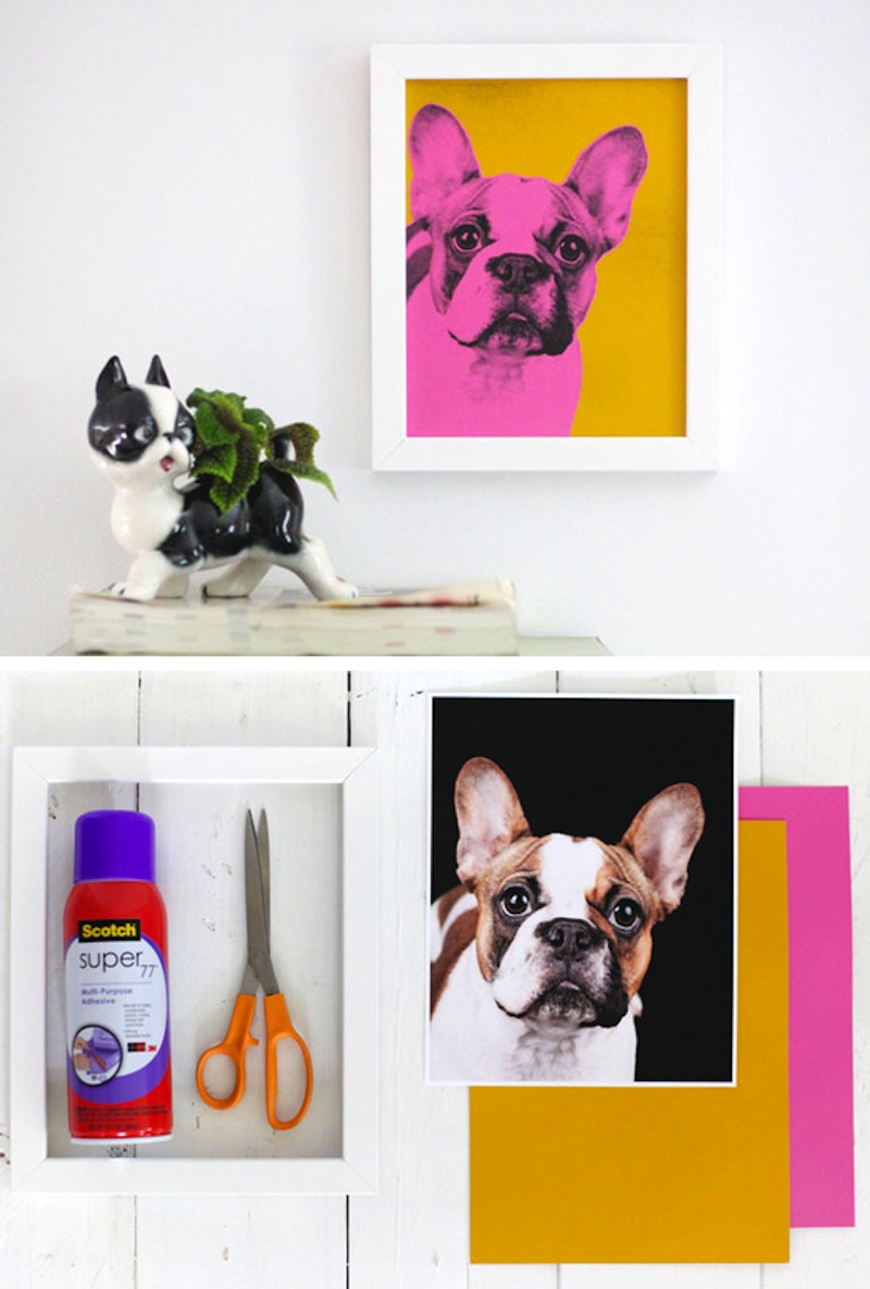 Pet pop art