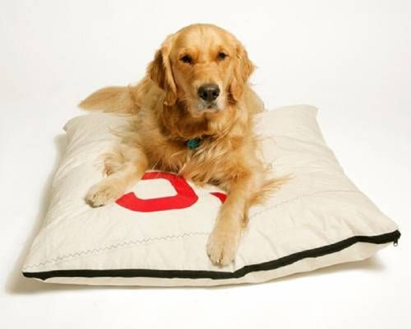 Recycled sail dog bed