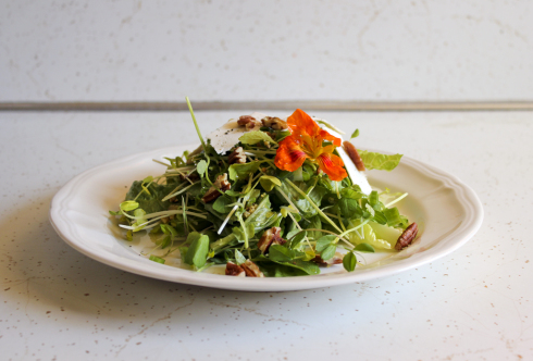 Microgreens salad with garlic mustard vinaigrette