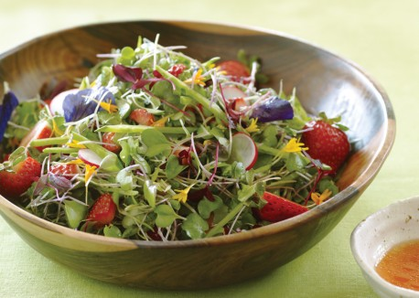 Microgreens with strawberry lime vinaigrette 458x326
