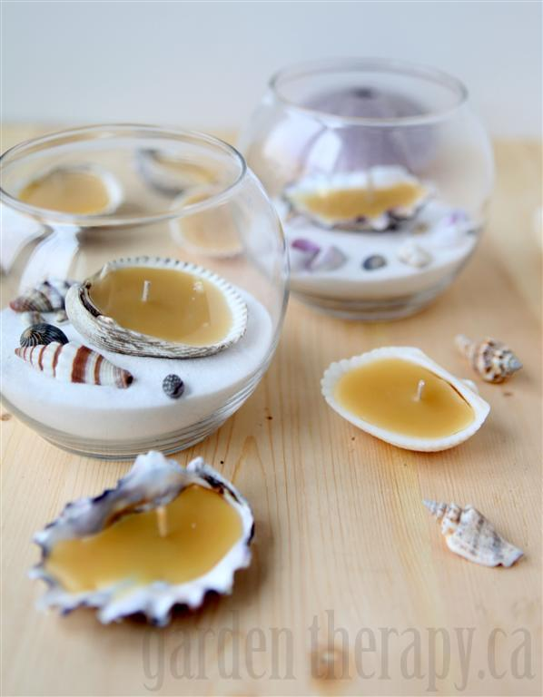 Beeswax seashell tealights diy