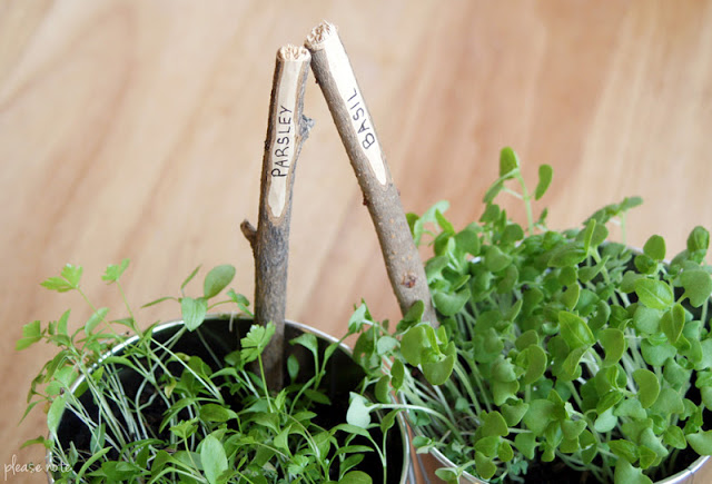 Diy stick plant markers