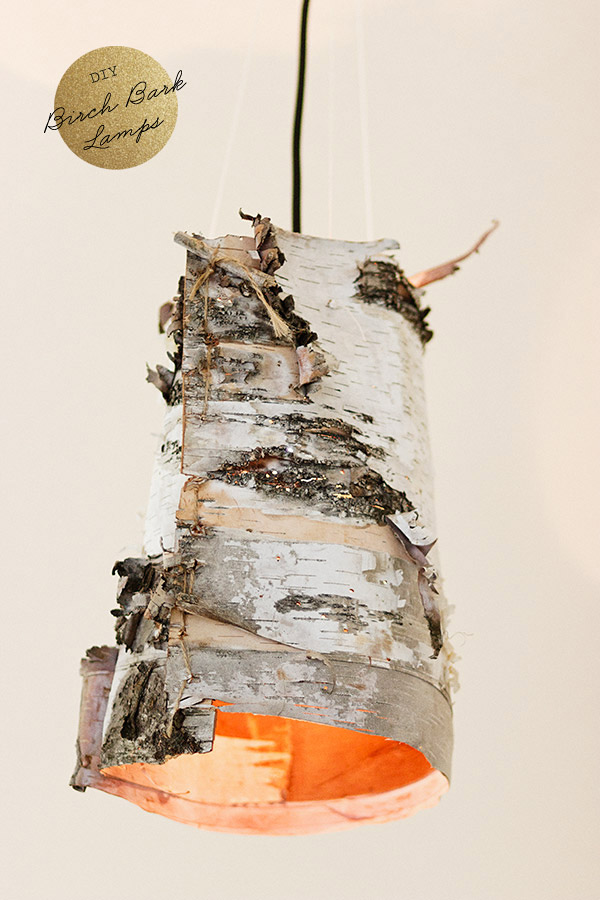 Diy birch bark lamp