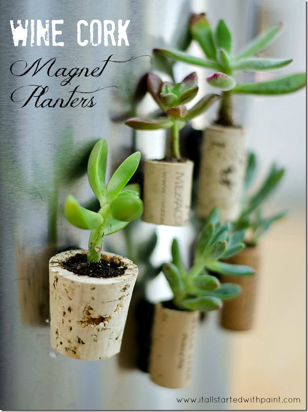 Diy wine cork planter magnets