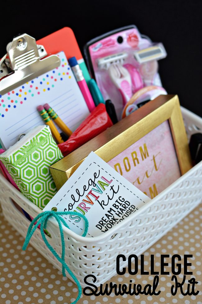 50 diy gift baskets to inspire all kinds of gifts diy college survival gift basket solutioingenieria Images