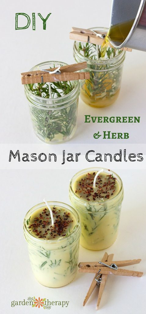 Diy evergreen and herb scented mason jar candles 478x1024