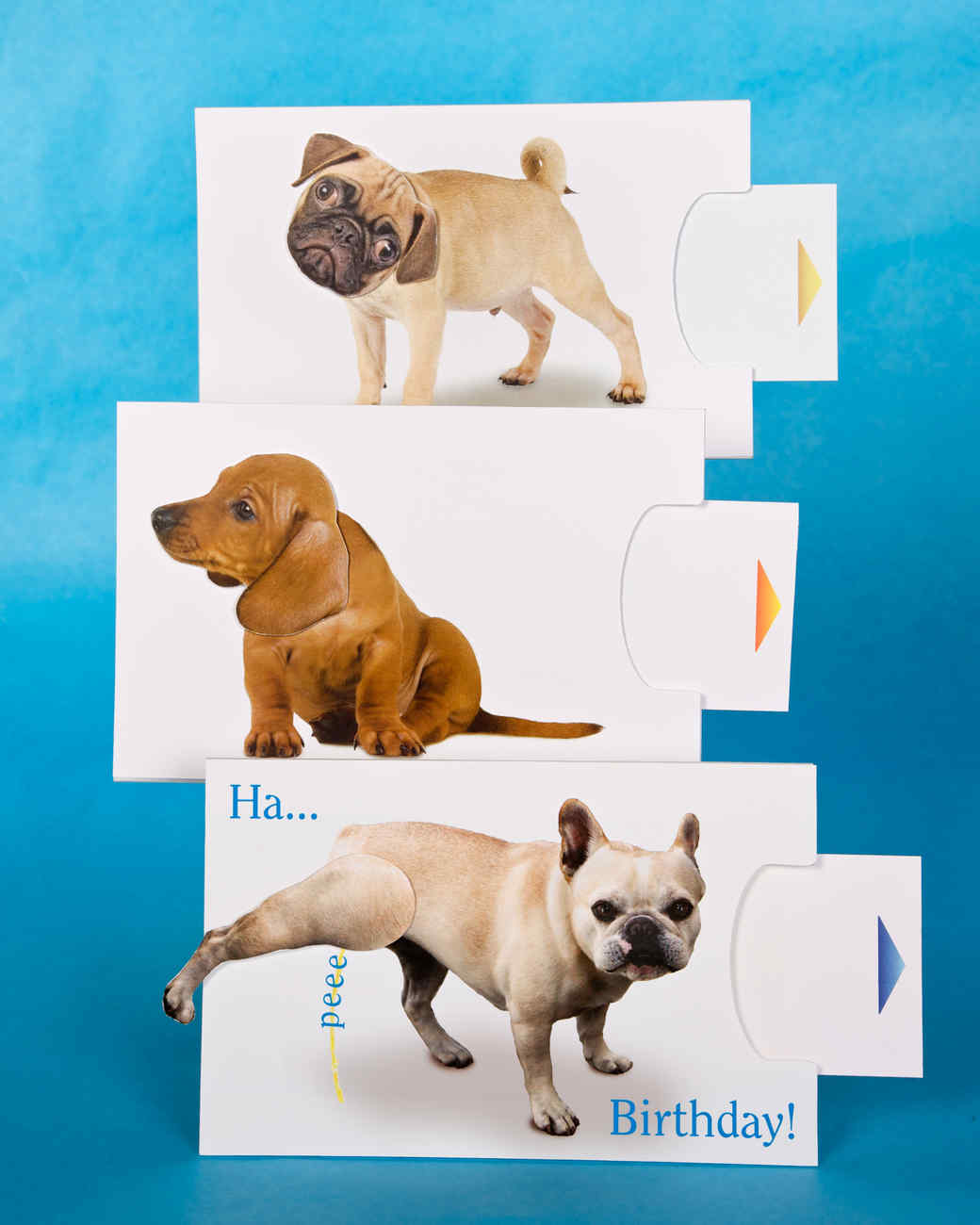 Diy mechanical dog cards