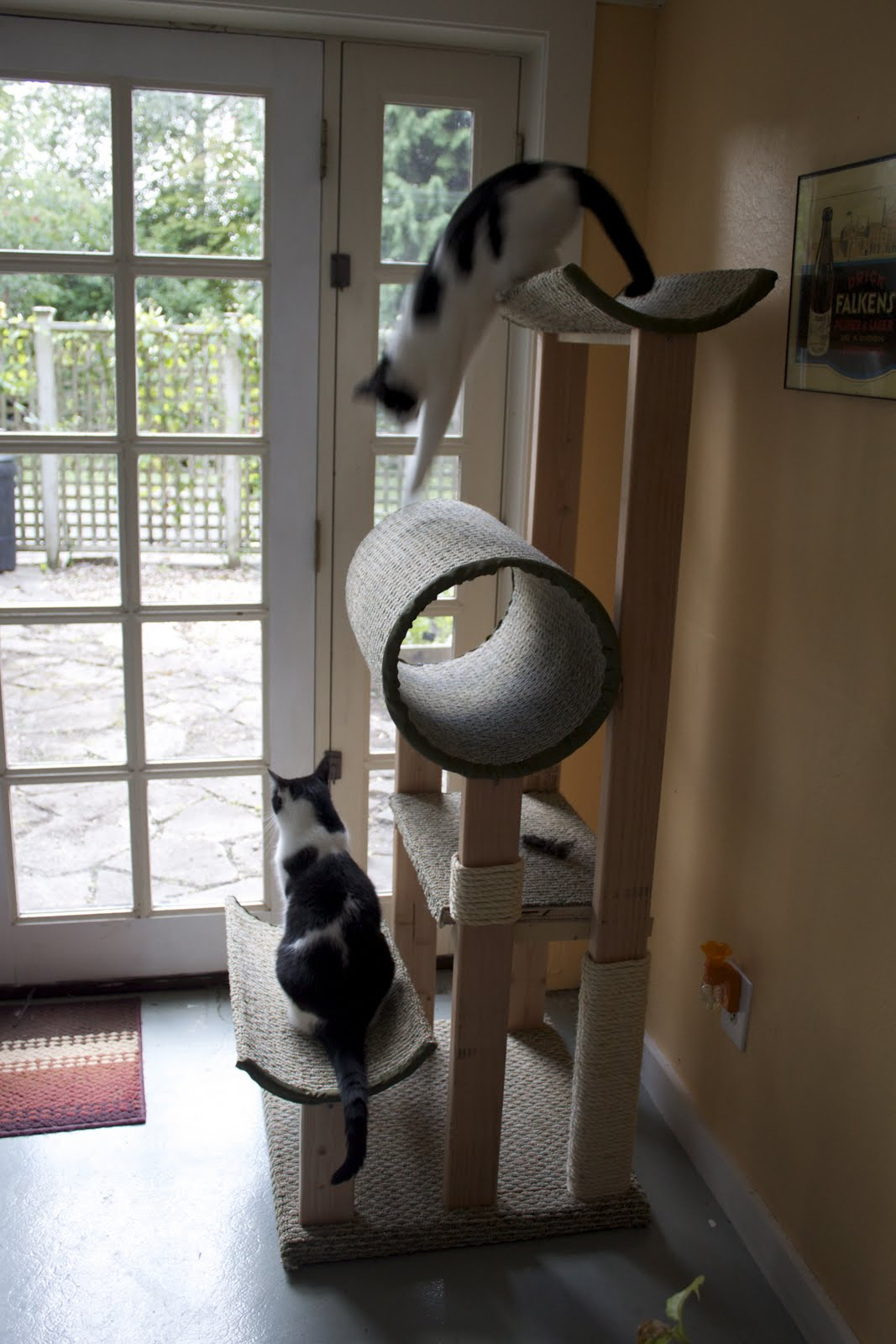 Homemade Cat Posts Trees And Houses