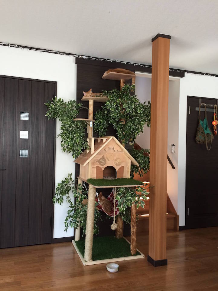 Cat treehouse with a hammock