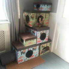 Gift box cat houses