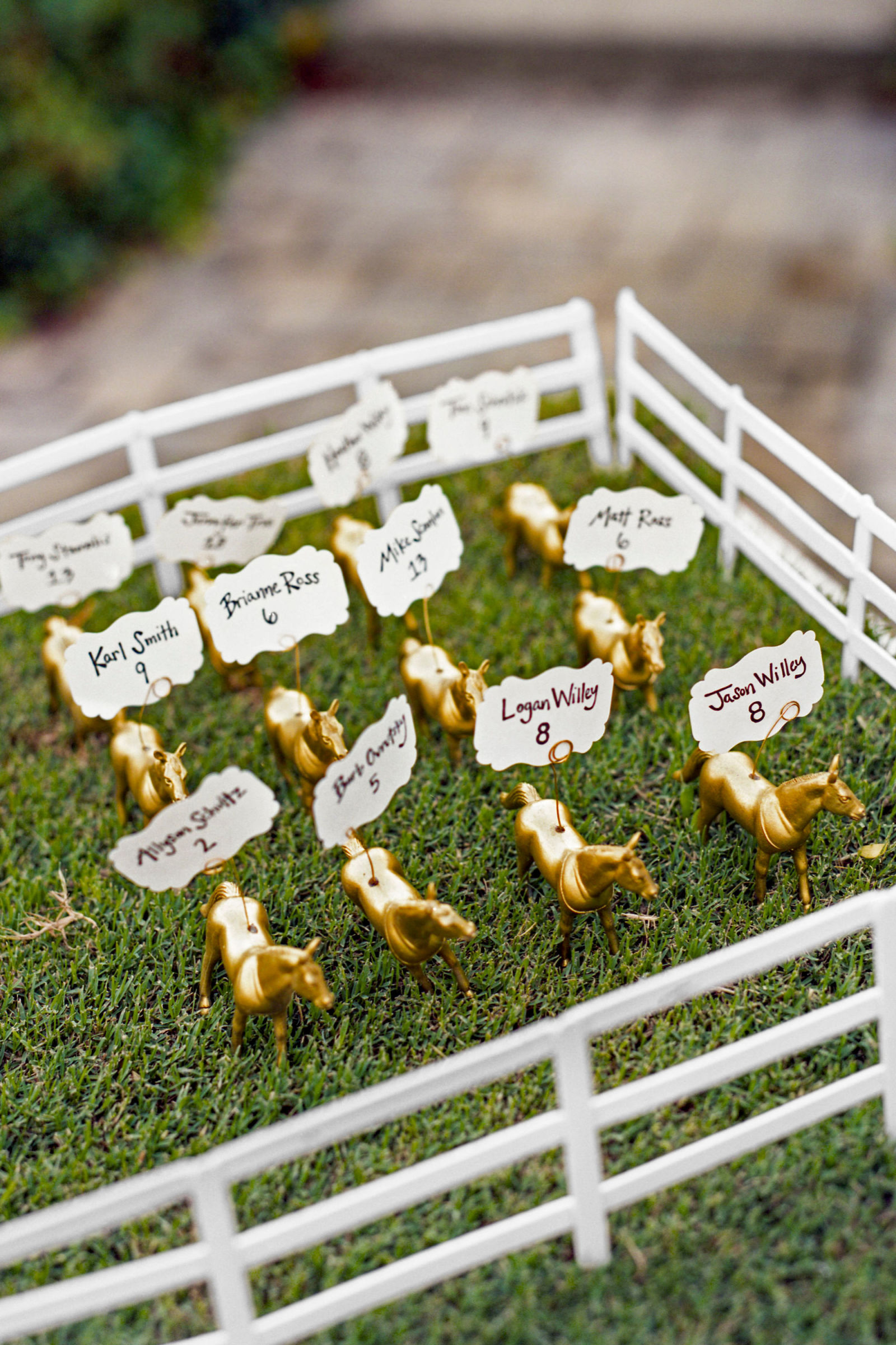 Animal escort card display