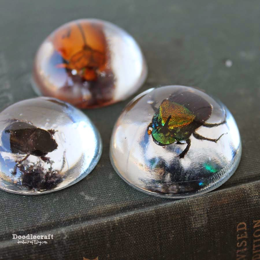 Beetles in resin jewelry diy