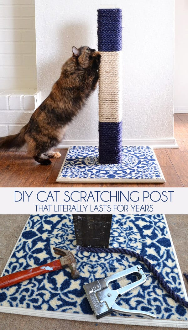 Diy rope wrapped scratching post