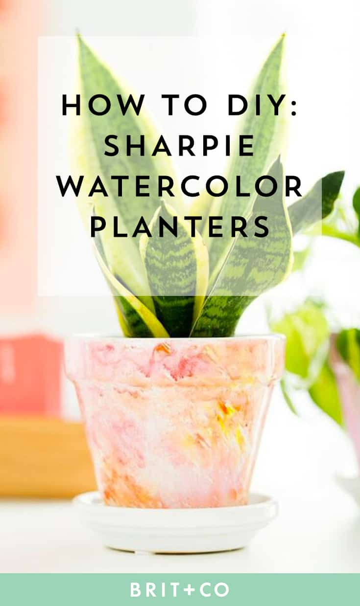 Diy sharpie watercolor planters