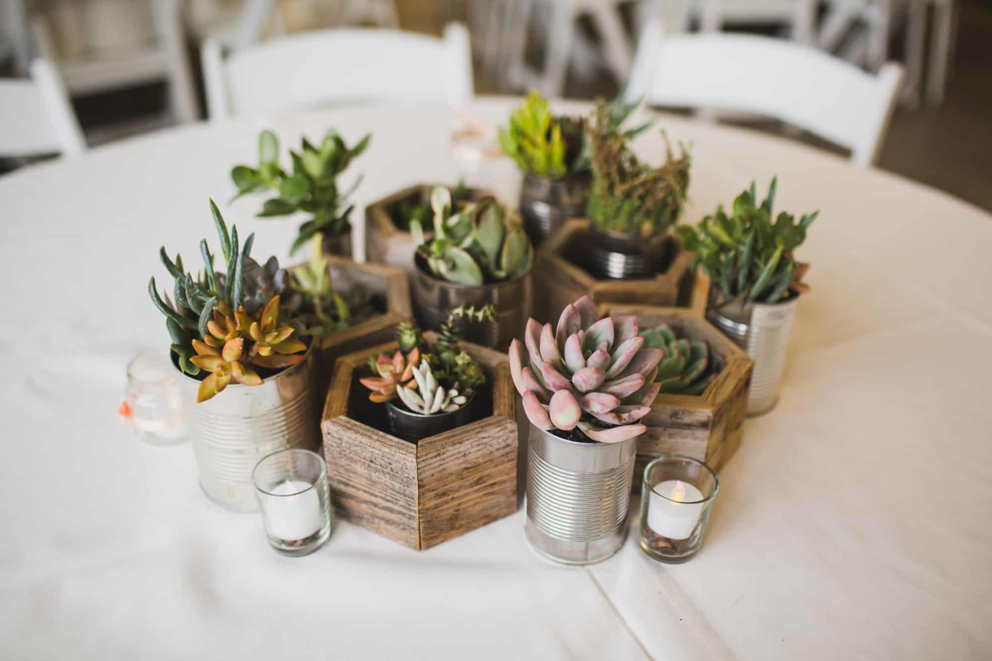 15 wedding centerpieces that you can diy diy succulents centerpieces in recycled planters junglespirit Images