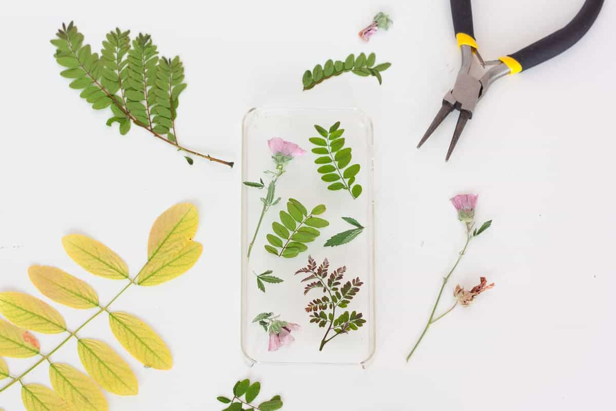 Botanical iphone case diy cut
