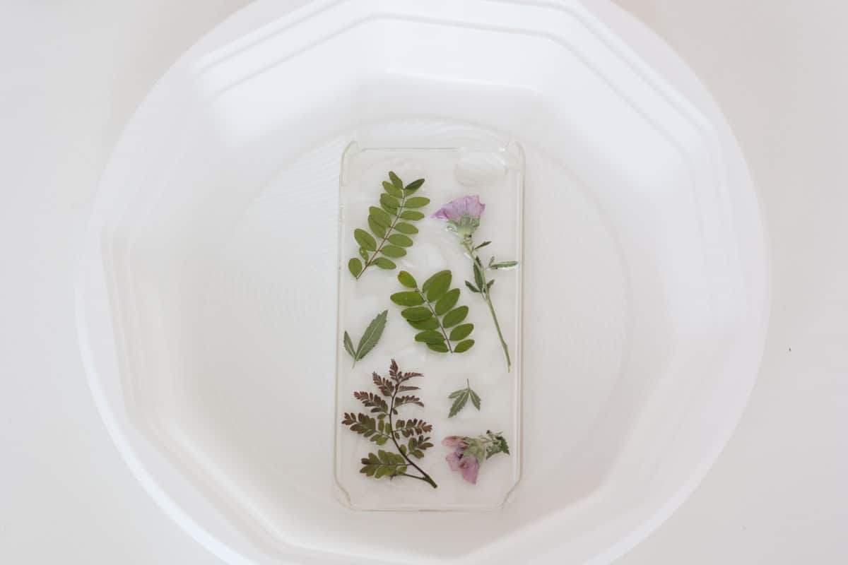 Botanical iphone case diy position