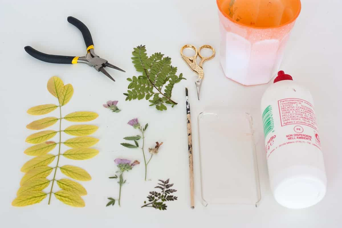 Botanical iphone case diy supplies