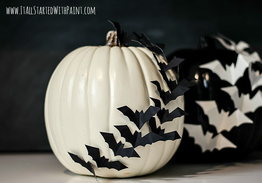 Bats on pumpkin no carve