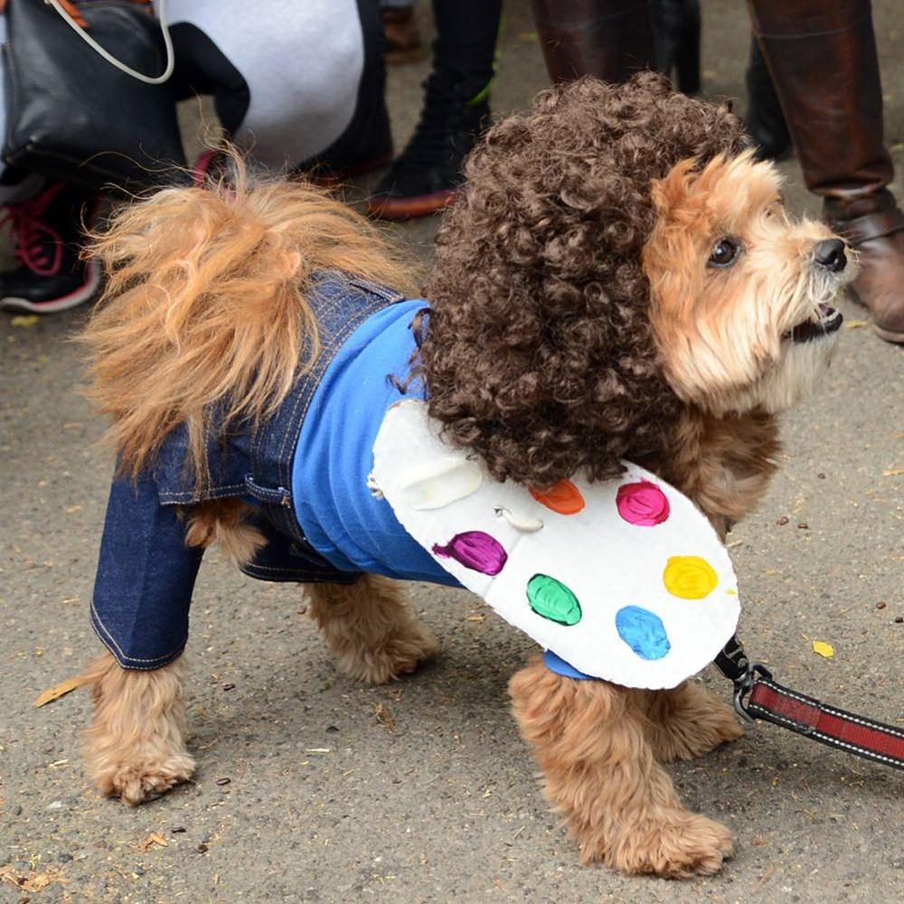 Bob ross dog dogs in halloween costumes