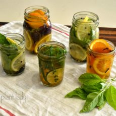 Citrus and mint air freshener jars