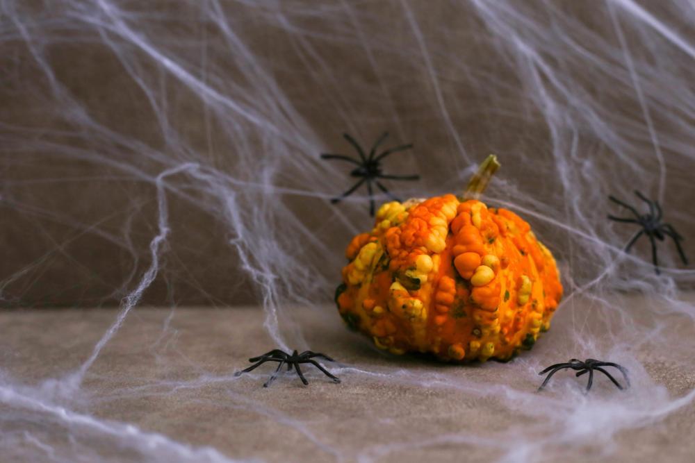 Diy spider web halloween spider web