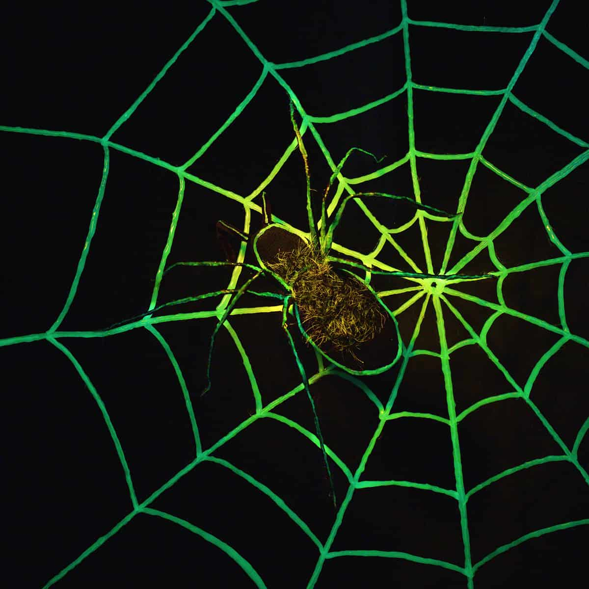 Diy glow in the dark spider web
