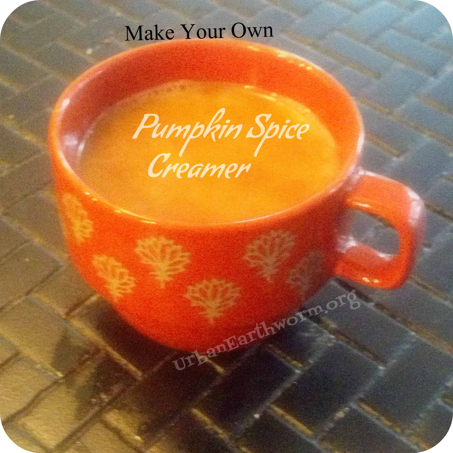 Diy pumpkin spice creamer for regular coffee