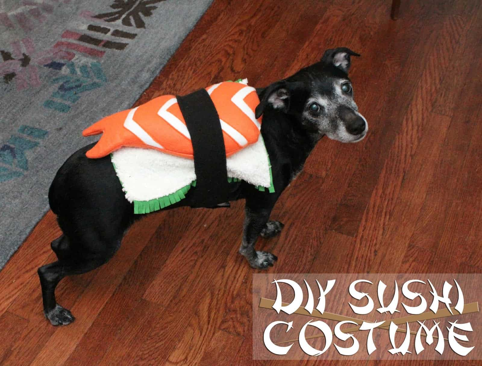 Dog sushi costume