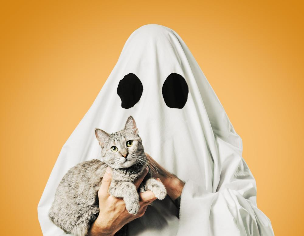 Easy costumes for guys ghost