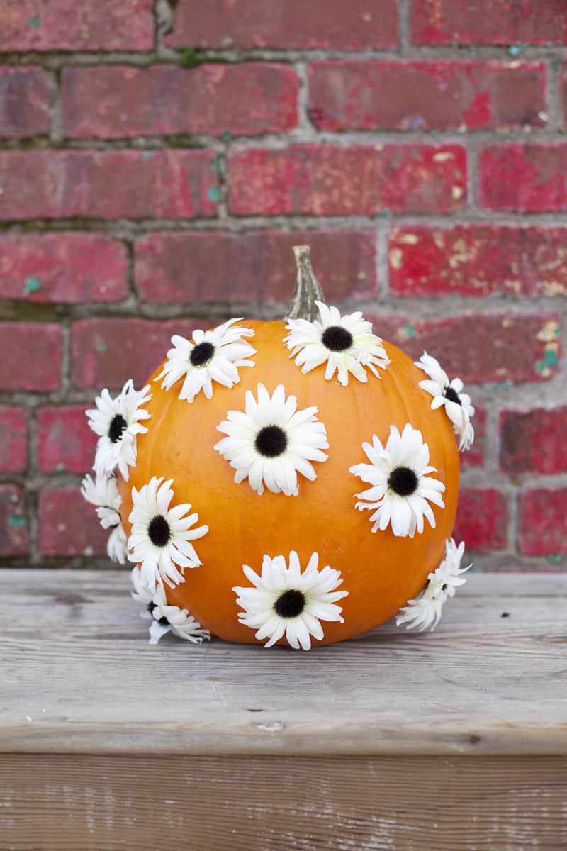 Floral no cave pumpkin idea