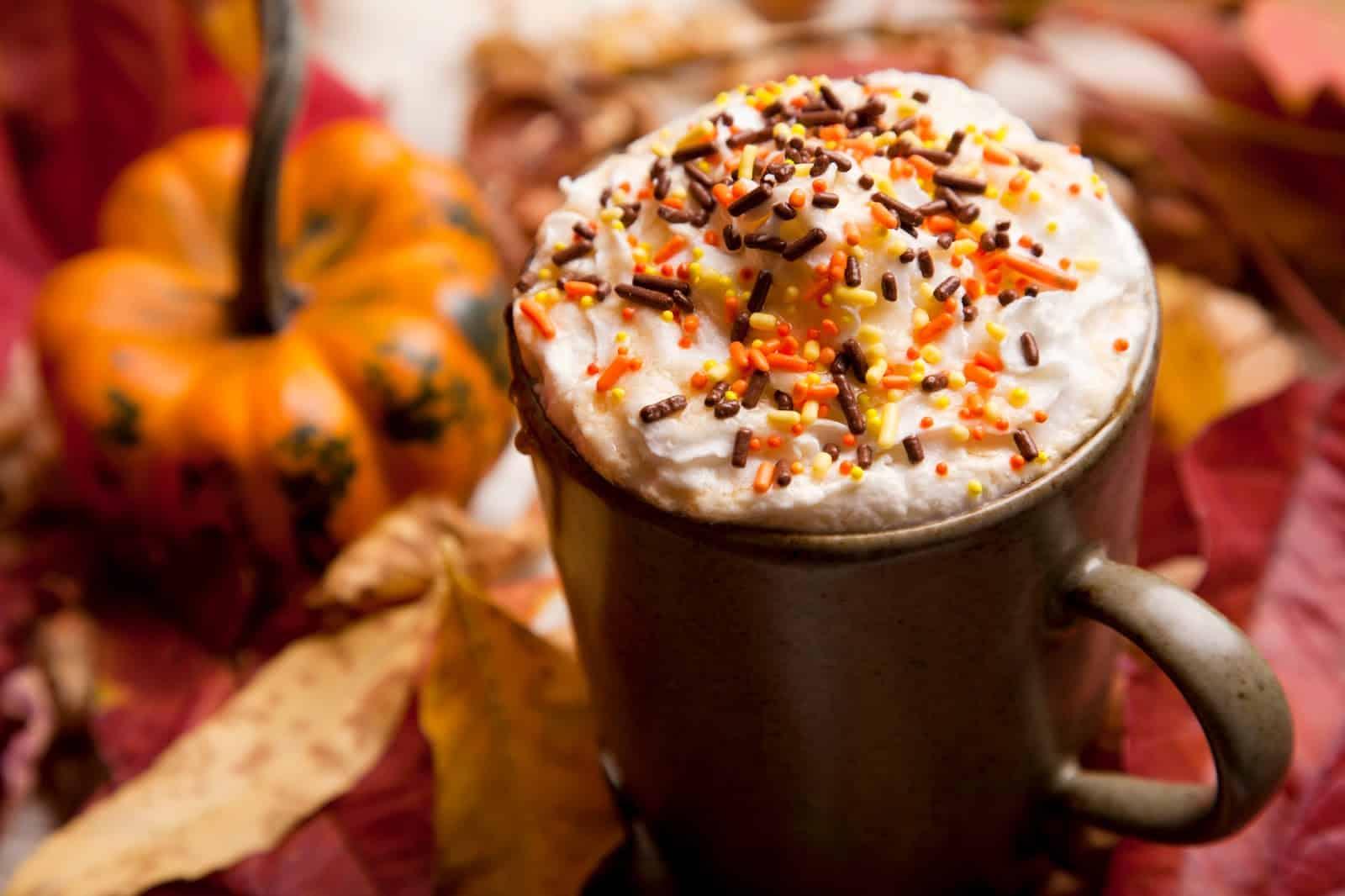 Fall cinnamon pumpkin blend