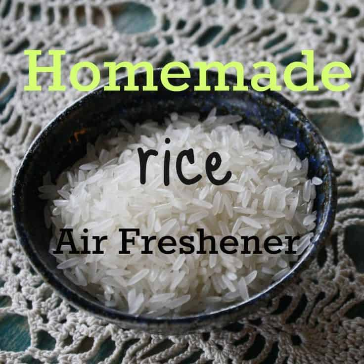 Homemade Rice Air Freshener