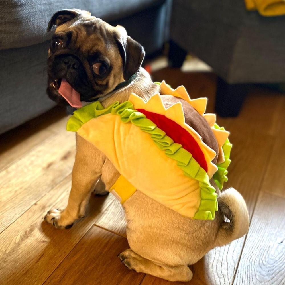 Hot dog funny diy costumes