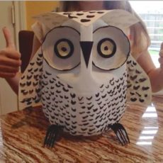 Milk jug and jar lid owl