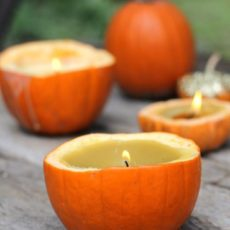 Pumpkin candle air fresheners