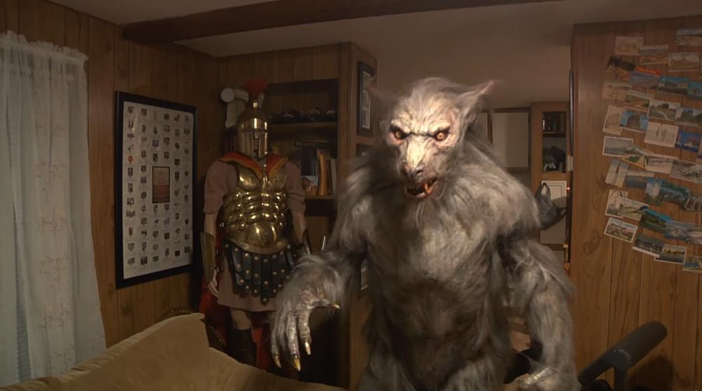 Wrewolf costume