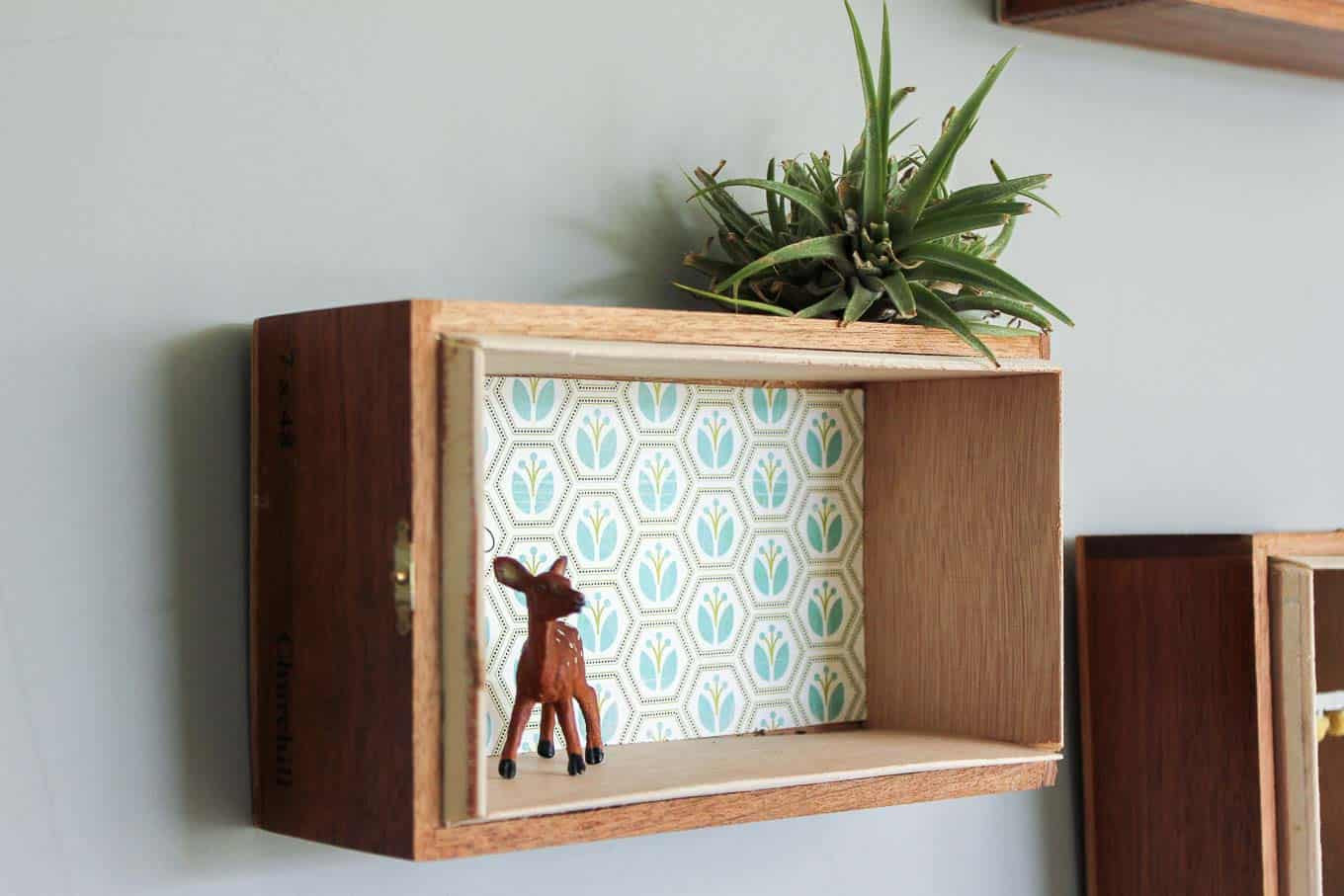 Cigar box trinket storage shelf