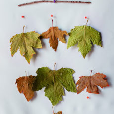 Dried leaf branch mobile