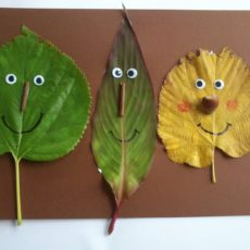Funny face leaves